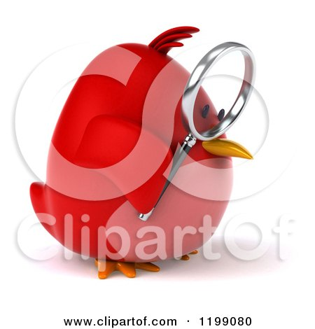 Clipart of a 3d Chubby Red Bird Searching with a Magnifying Glass 2 - Royalty Free CGI Illustration by Julos