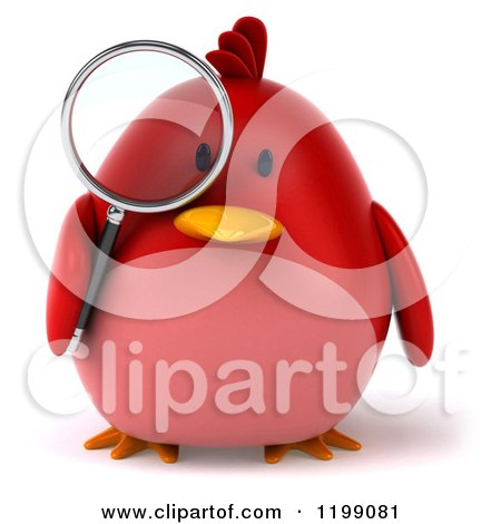 Clipart of a 3d Chubby Red Bird Searching with a Magnifying Glass - Royalty Free CGI Illustration by Julos