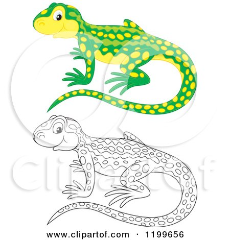 Cartoon of a Cute Green and Yellow Newt - Royalty Free ...