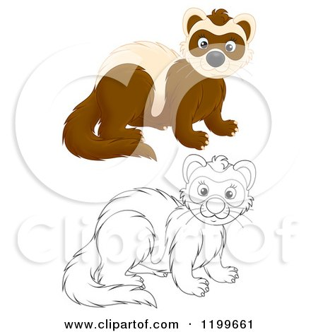Cartoon of a Colored and Line Art Cute Weasel or Polecat - Royalty Free Clipart by Alex Bannykh
