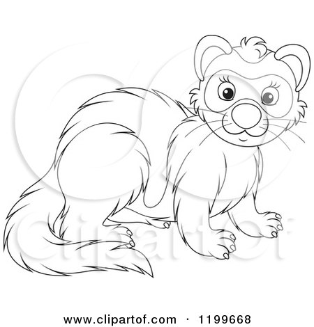 Cartoon of a Black and White Cute Weasel or Polecat - Royalty Free Vector Clipart by Alex Bannykh