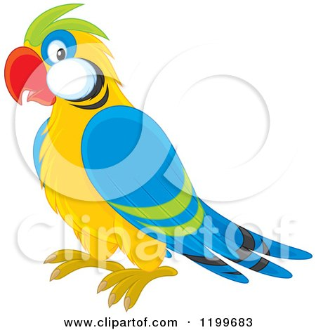 Royalty-Free (RF) Parrot Clipart, Illustrations, Vector Graphics #1