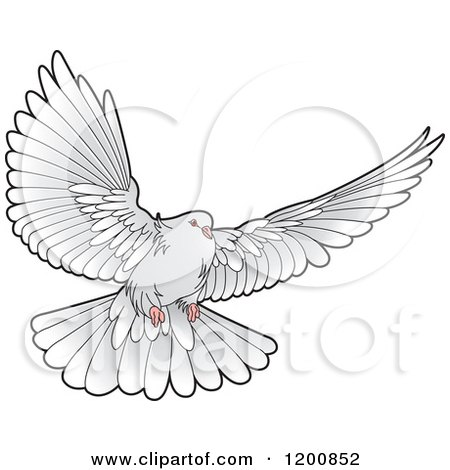 Clipart of a Grey Dove Flying - Royalty Free Vector Illustration by Lal Perera