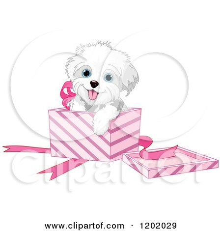 Cartoon of a Cute Playful Bichon Frise or Maltese Puppy ...