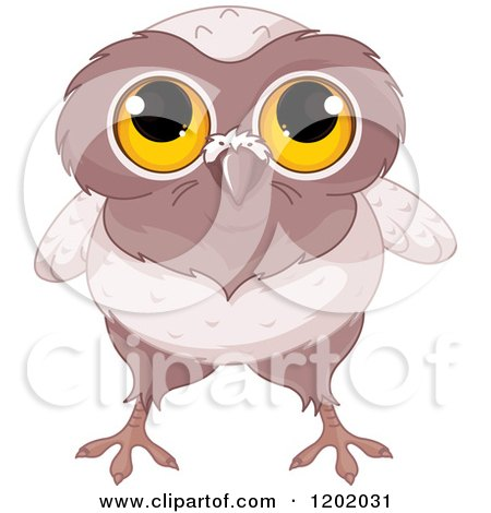 Cartoon of a Cute Owl with Big Yellow Eyes - Royalty Free Vector Clipart by Pushkin