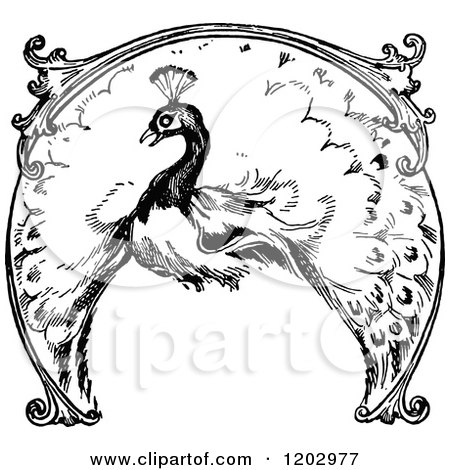 Clipart of a Vintage Black and White Lost Princess of Oz Peacock - Royalty Free Vector Illustration by Prawny Vintage