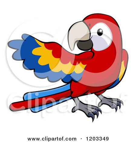 Cartoon of a Cute Scarlet Macaw Presenting - Royalty Free Vector Clipart by AtStockIllustration