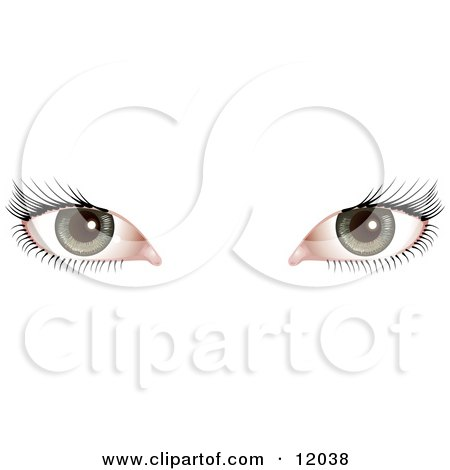 Woman's Green Eyes With Long Eye Lashes Clipart Picture by AtStockIllustration