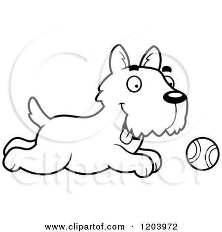 Cartoon of a Black And White Cute Scottish Terrier Puppy Chasing a Tennis Ball - Royalty Free Vector Clipart by Cory Thoman