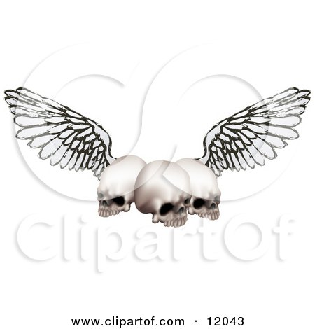 Three Human Skulls With Grunge Wings Posters, Art Prints