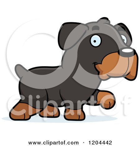 Cartoon of a Cute Rottweiler Puppy Dog Walking - Royalty Free Vector Clipart by Cory Thoman