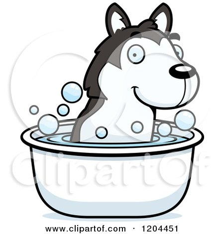 Cartoon of a Cute Husky Puppy Dog Taking a Bath - Royalty Free Vector Clipart by Cory Thoman