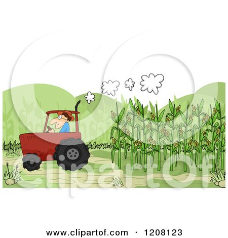 Cartoon of a Farmer Harvesting Corn in a Tractor - Royalty Free Vector Clipart by BNP Design Studio