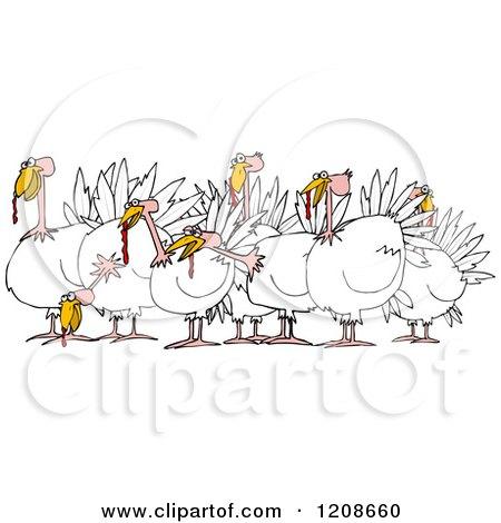 Cartoon of a Flock of Turkeys - Royalty Free Vector Clipart by djart