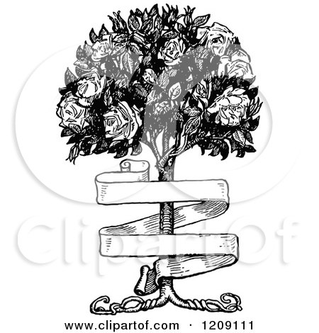 Clipart Of A Vintage Black And White Banner And Rose Bush Royalty Free Vector Illustration