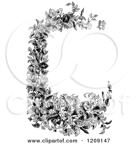 Clipart of a Vintage Black and White Morning Glory Plant Border - Royalty Free Vector Illustration by Prawny Vintage