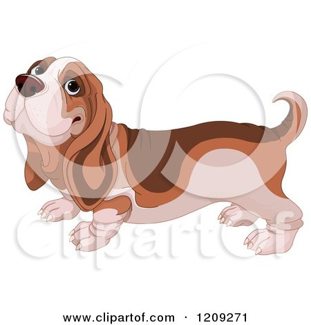 Cartoon of a Cute Happy Basset Hound Dog - Royalty Free Vector Clipart by Pushkin