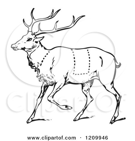 Clipart of a Black and White Deer with Butcher Sections of Venison Cuts - Royalty Free Vector Illustration by Picsburg