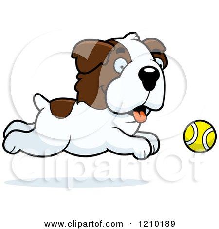 Cartoon of a St Bernard Dog Chasing a Tennis Ball - Royalty Free Vector Clipart by Cory Thoman