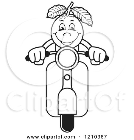 Clipart Of A Black And White Guava Mascot On Scooter