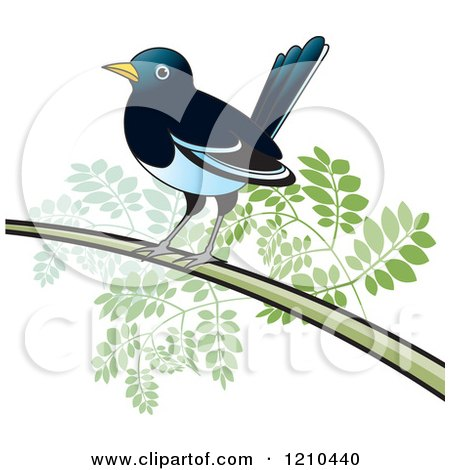 Clipart of a Perched Magpie Bird - Royalty Free Vector Illustration by Lal Perera