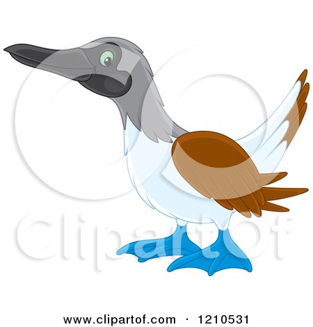 Cartoon of a Blue Footed Boobie Bird - Royalty Free Vector Clipart by Alex Bannykh