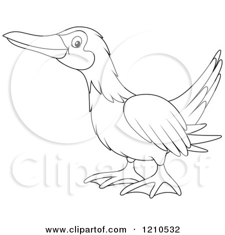 Cartoon of an Outlined Blue Footed Boobie Bird - Royalty Free Vector Clipart by Alex Bannykh
