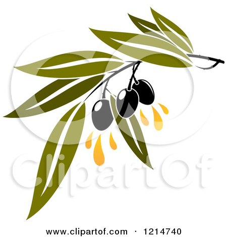 Clipart of Black Olives with Leaves and Oil Drops - Royalty Free Vector Illustration by Vector Tradition SM