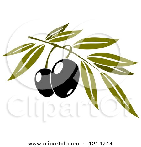 Clipart of Black Olives with Leaves 2 - Royalty Free Vector Illustration by Vector Tradition SM