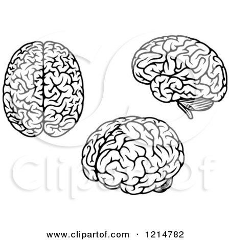 Royalty-Free (RF) Black And White Brain Clipart ...