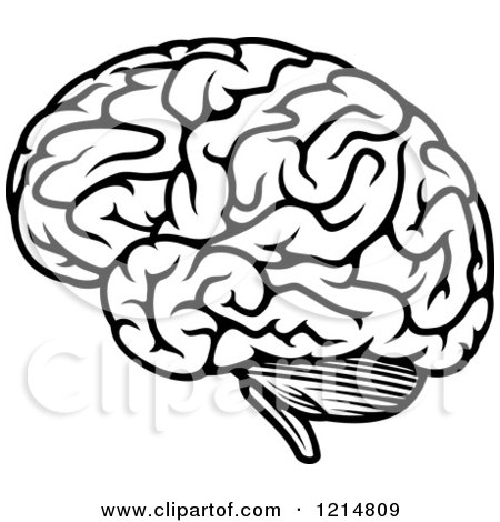 Clipart of a Black and White Human Brain 2 - Royalty Free ...