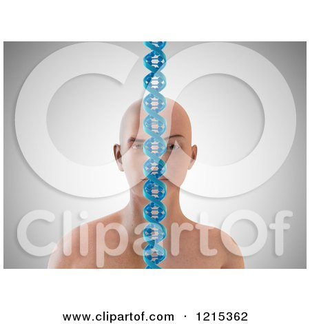 Clipart of a 3d Person Split by Gender with a Heredity DNA Strand - Royalty Free Illustration by Mopic
