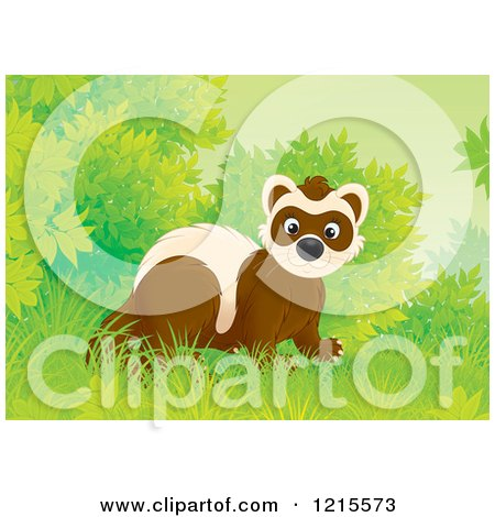 Clipart of a Cute Happy Polecat Weasel in Nature - Royalty Free Illustration by Alex Bannykh