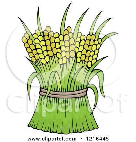 Clipart of Harvested Wheat - Royalty Free Vector Illustration by visekart