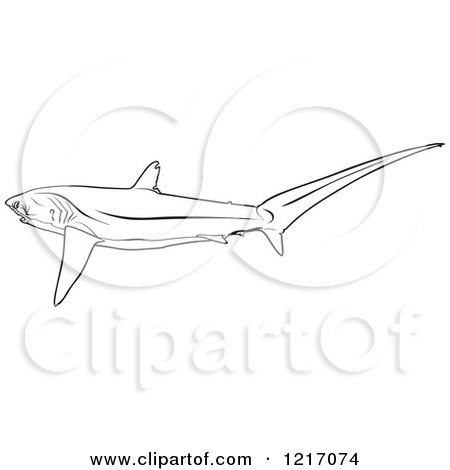 Royalty free coloring book page illustrations by dero page 1 for Thresher shark coloring page