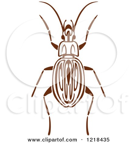 Clipart of a Brown and White Beetle 3 - Royalty Free Vector Illustration by Vector Tradition SM