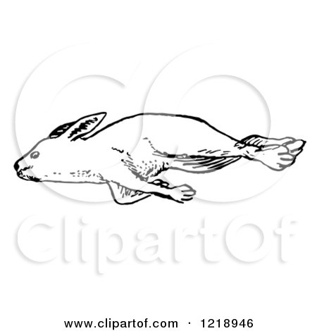 Clipart of a Black and White Dead Rabbit - Royalty Free Vector Illustration by Picsburg