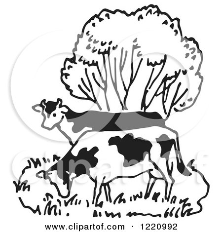 Clipart of Black and White Cows Grazing by a Tree - Royalty Free Vector Illustration by Picsburg
