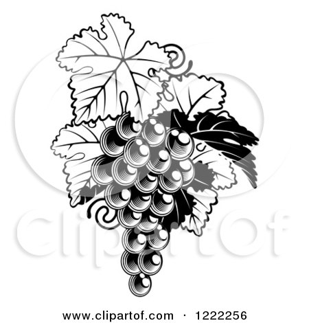 Clipart of a Black and White Bunch of Grapes and Leaves - Royalty Free Vector Illustration by AtStockIllustration