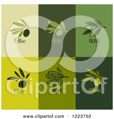 Clipart of Green Olive Designs 2 - Royalty Free Vector Illustration by elena