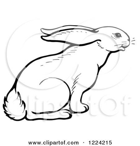Animal Tracks Clipart #1220929 - Illustration by Picsburg