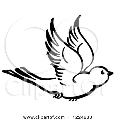 Clipart of a Black and White Flying Bird - Royalty Free Vector Illustration by Picsburg