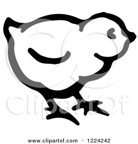 Clipart of a Black and White Cute Baby Chick - Royalty Free Vector Illustration by Picsburg