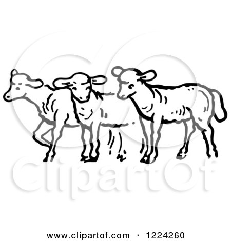 Clipart of Black and White a Group of Sheep - Royalty Free Vector Illustration by Picsburg