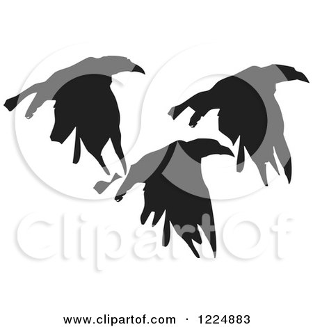 Clipart of Black Ink Flying Crows - Royalty Free Vector Illustration by xunantunich