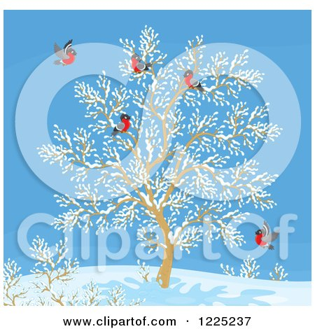 Clipart of a Winter Tree with Robins - Royalty Free Vector Illustration by Alex Bannykh