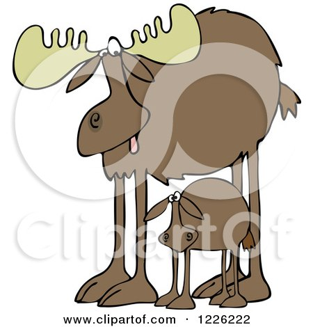 Clipart of a Mother Moose and Calf - Royalty Free Vector Illustration by djart