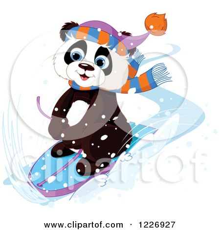 Clipart of a Cute Panda Sledding Through the Snow - Royalty Free Vector Illustration by Pushkin