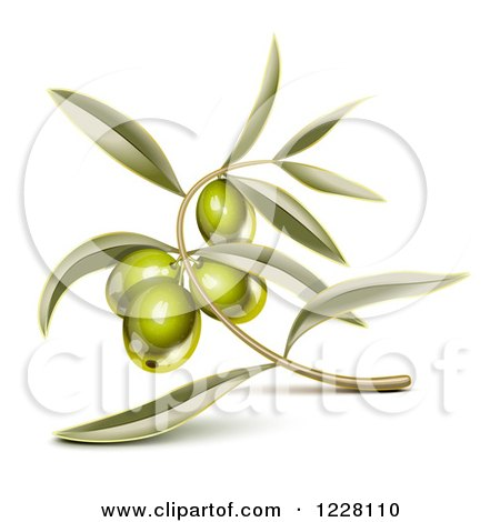 Clipart of a Branch with Green Olives and Leaves - Royalty Free Vector Illustration by Oligo
