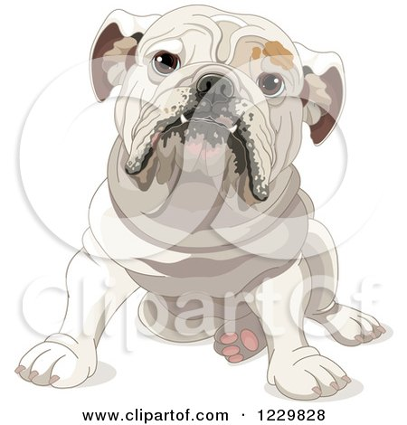 Clipart of a Cute Bulldog Sitting - Royalty Free Vector Illustration by Pushkin